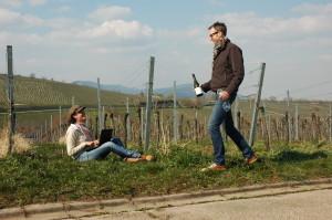 Bloggen im Weinberg