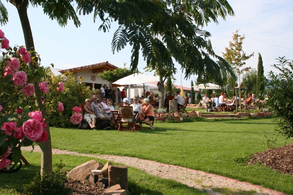 Die Schonsten Weingarten An Der Sudlichen Weinstrasse Maximilians