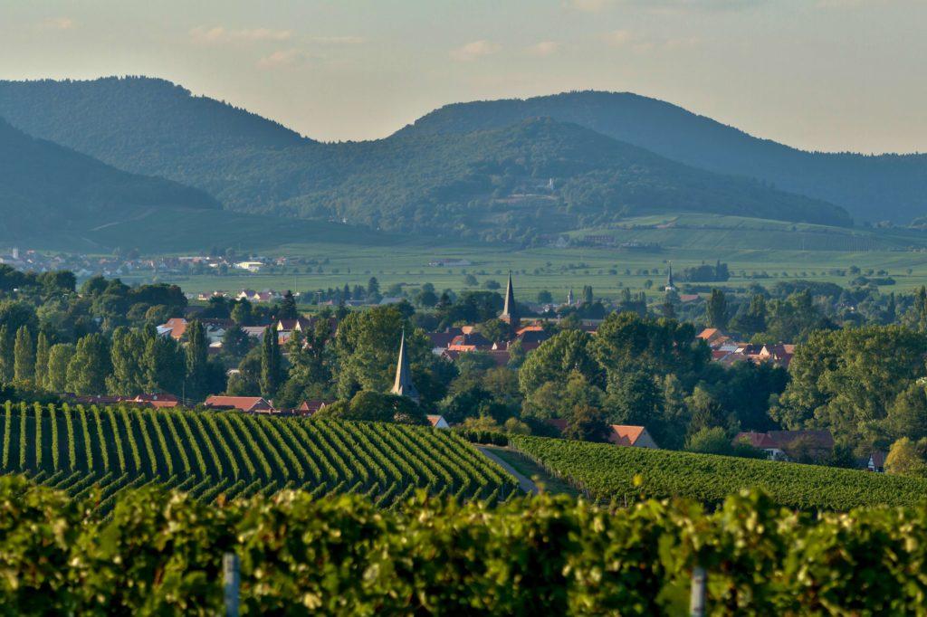 Landau Umgebung